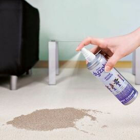 DYSON DYZOLV Dyzolv Spot Cleaning Spray